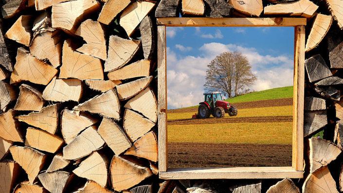 Forst- und Landwirtschaft